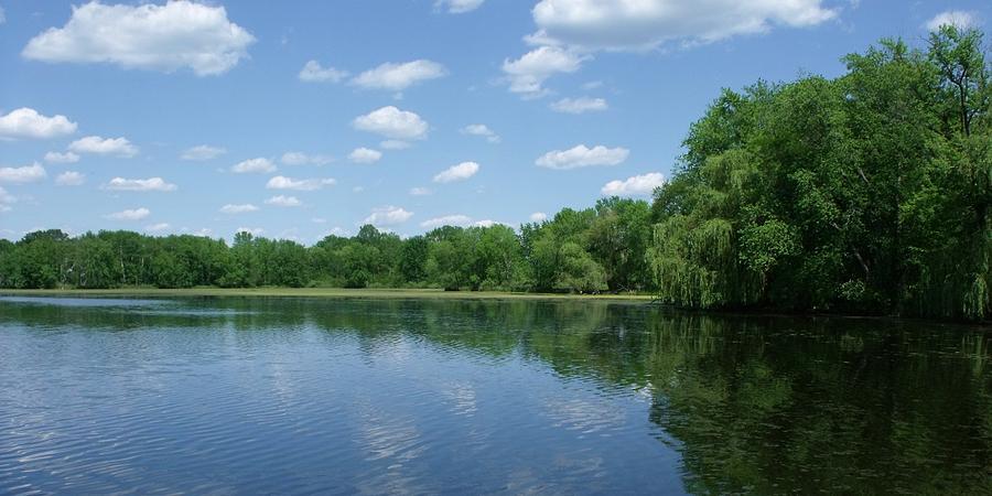 Water Photograph - Harris Pond by Anna Villarreal Garbis