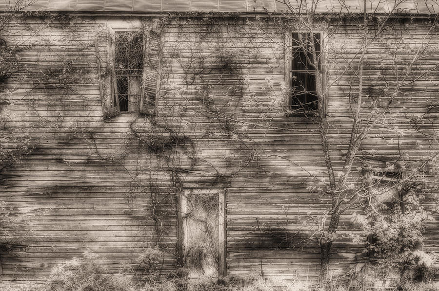 Haunting Photograph - Haunting  by JC Findley