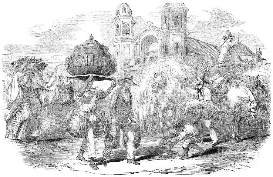 1853 Photograph - Havana, Cuba, 1853 by Granger