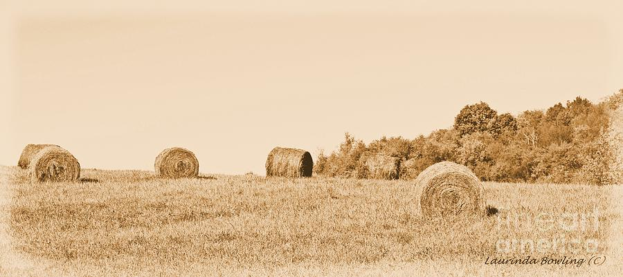 Hay Photograph - Hay Rolls  by Laurinda Bowling