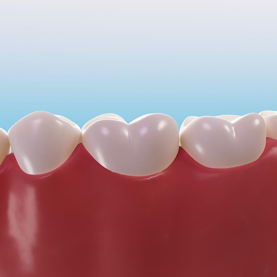 Artwork Photograph - Healthy Teeth, Artwork by Sciepro