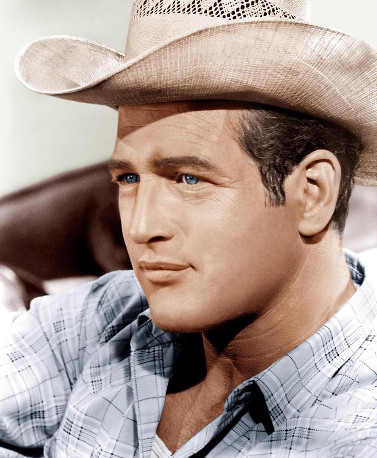1963 Movies Photograph - Hud, Paul Newman, 1963 by Everett