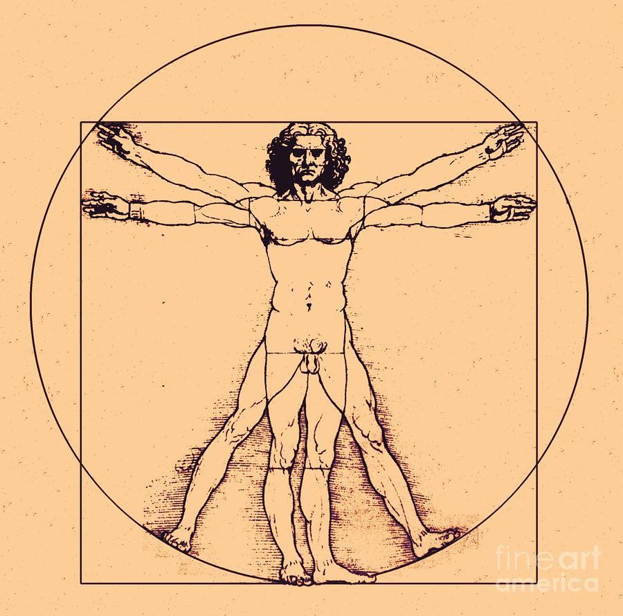 Human Body By Da Vinci Photograph By Omikron