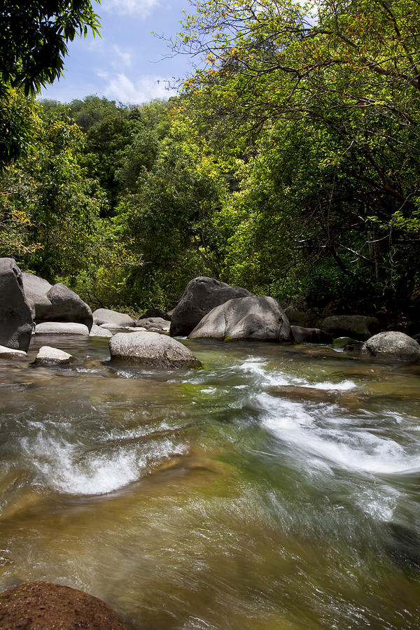 Beautiful Photograph - Iao River by Jenna Szerlag