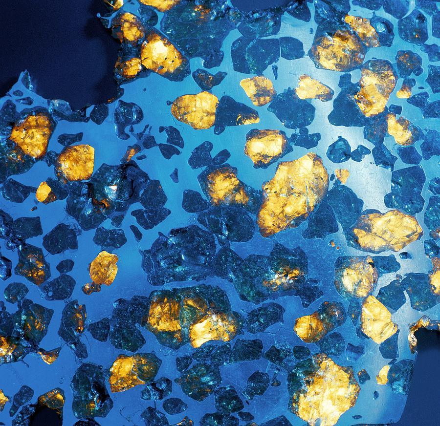 Imilac Meteorite Photograph - Imilac Meteorite Sample by Detlev Van Ravenswaay