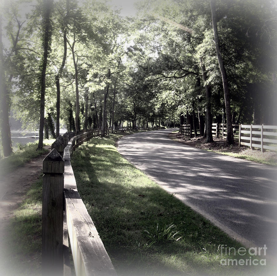 Richmond Va Photograph - In My Dream The Road Less Traveled by Nancy Dole McGuigan