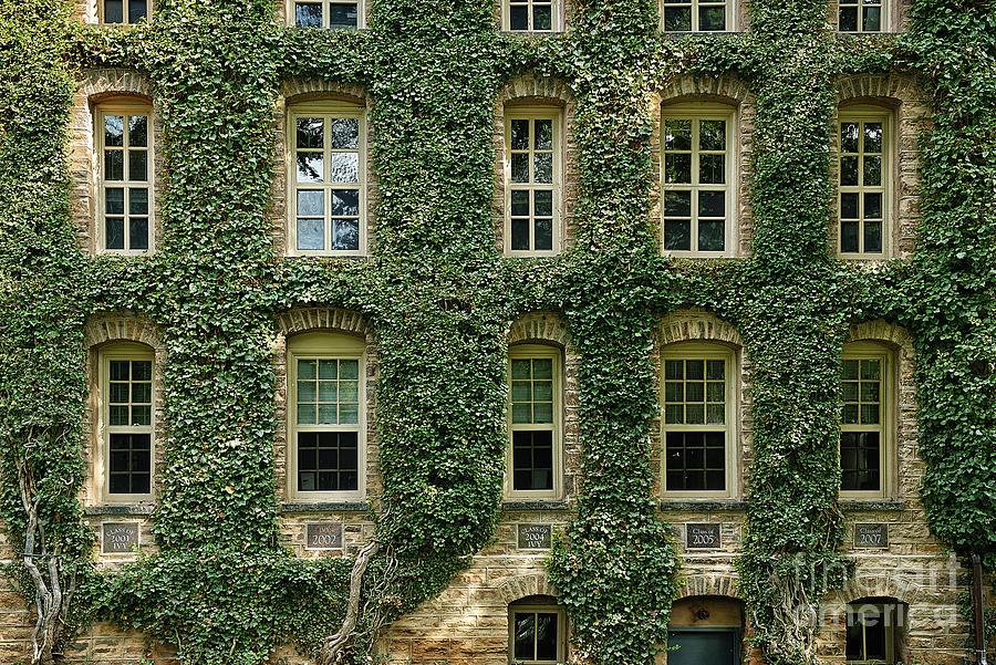 Ivy League Photograph - Ivy League by John Greim