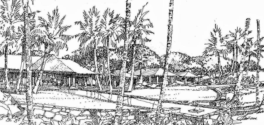 Kukio Estate Drawing by Andrew Drozdowicz