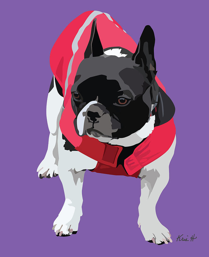 French Bulldog Digital Art - Lady In Red by Kris Hackleman