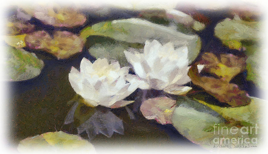 Water Mixed Media - Lily Pond by Dawn Serkin