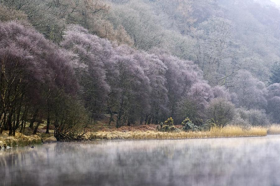 Cold Photograph - Lower Lake, Glendalough, County by Peter McCabe