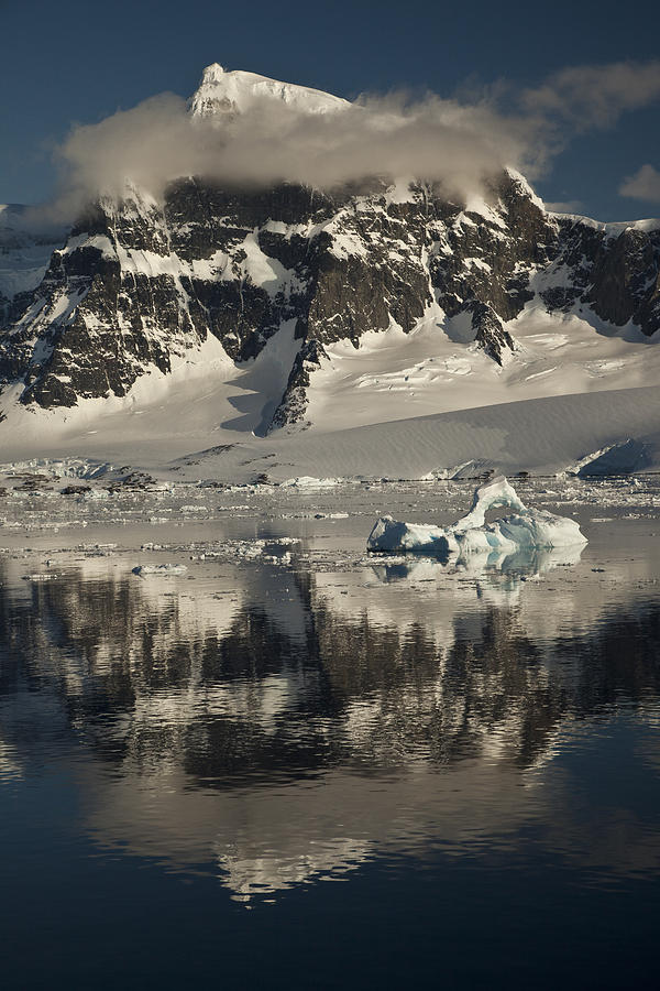 00479579 Photograph - Luigi Peak Wiencke Island Antarctic by Colin Monteath