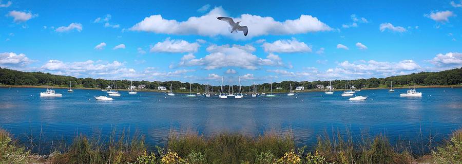 Marina Park Photograph - Marina by Lourry Legarde