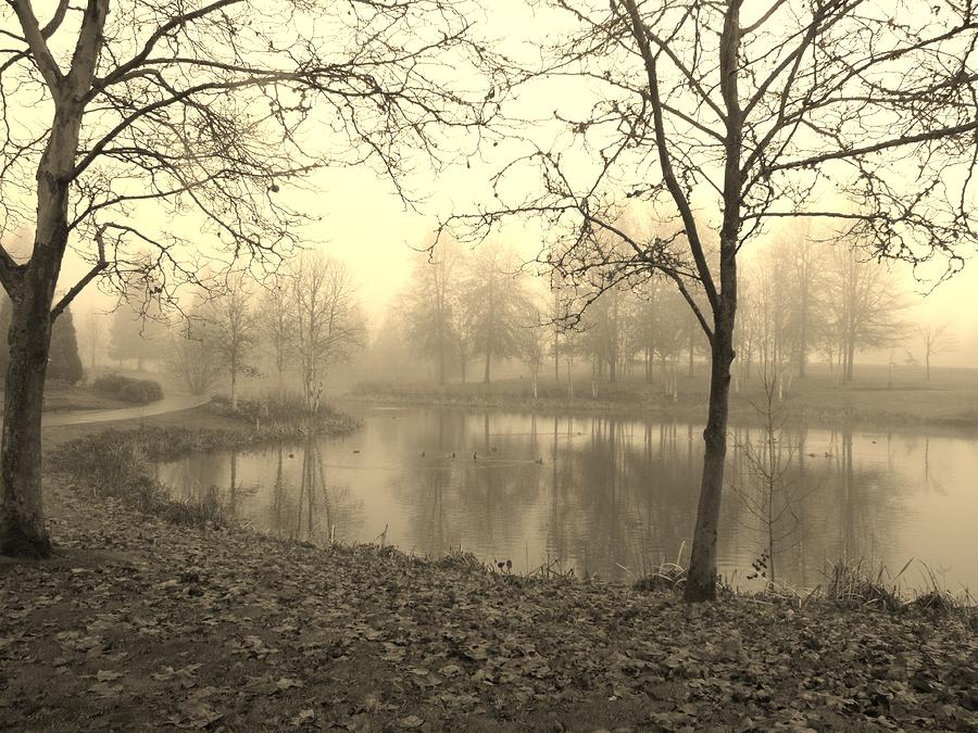 Pond Photograph - Mist by Amy Norden