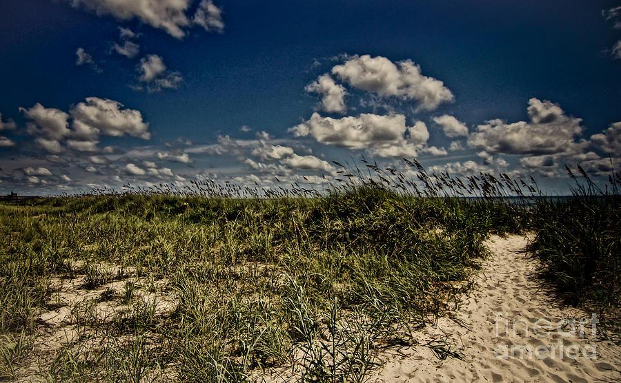 Myrtle Beach Photograph - Myrtle Beach by Matthew Trudeau