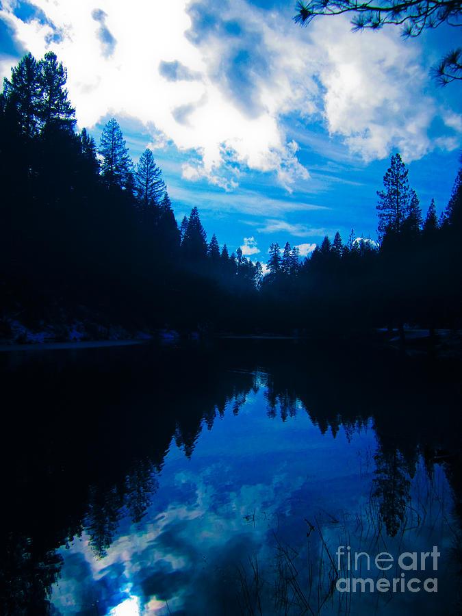 Landscape Photograph - Natures Blueprint by Dan Julien