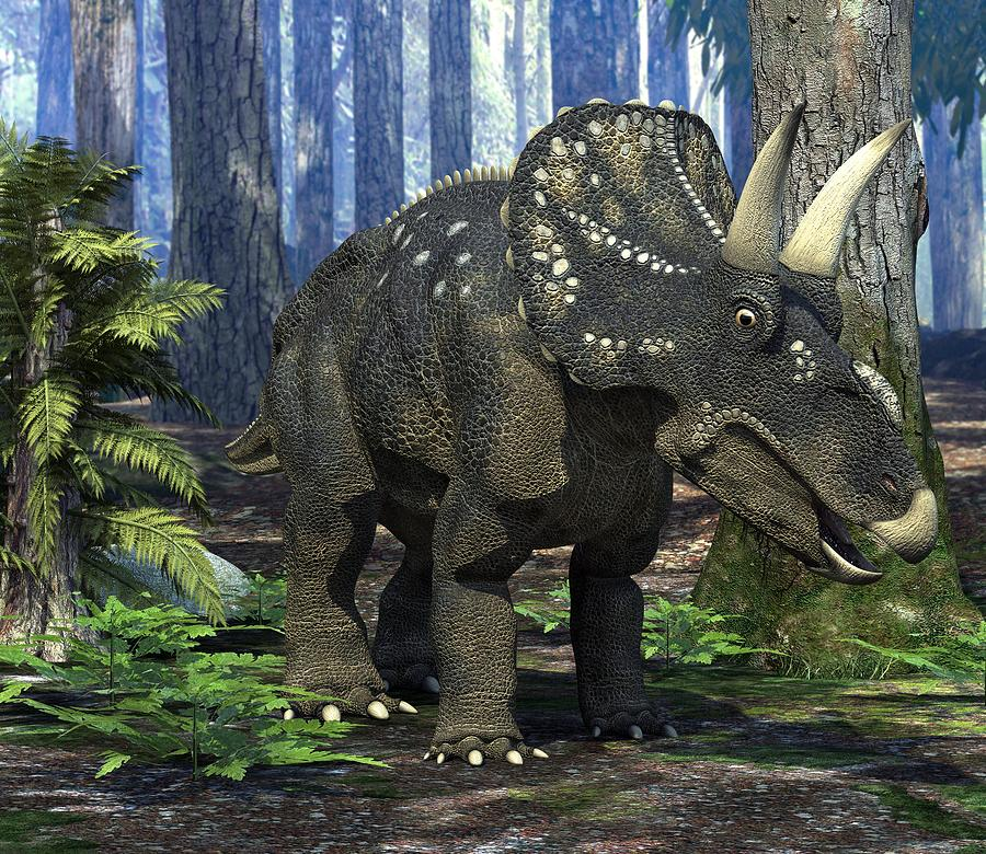 Diceratops Photograph - Nedoceratops Dinosaur, Artwork by Roger Harris