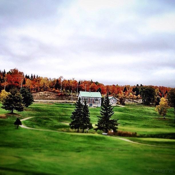 Autumn Photograph - Northern Landscape by Natasha Marco
