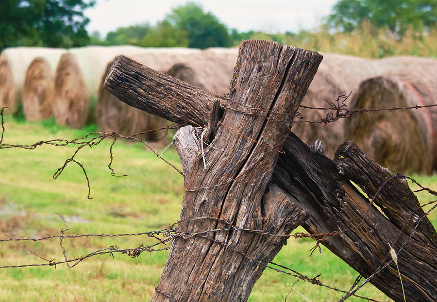 Cross Photograph - Old Cross Fence by Lisa Moore