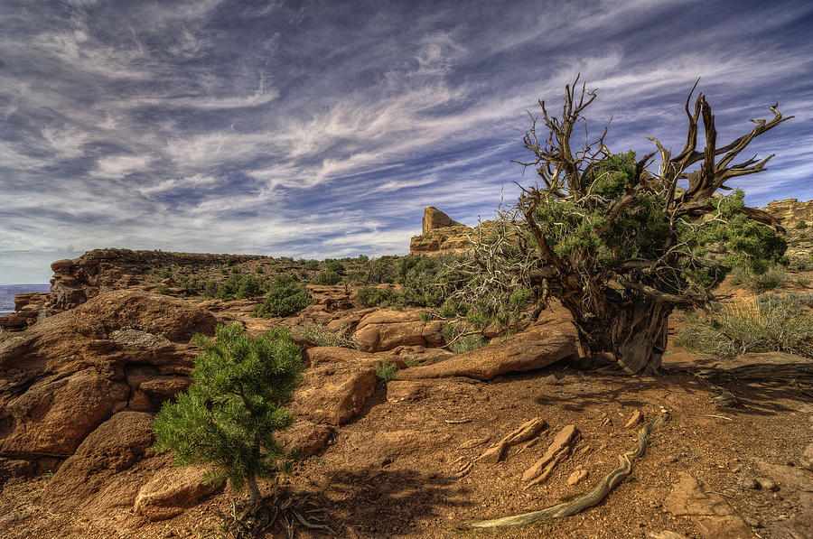 Hdr Photograph - On The Edge by Stephen Campbell