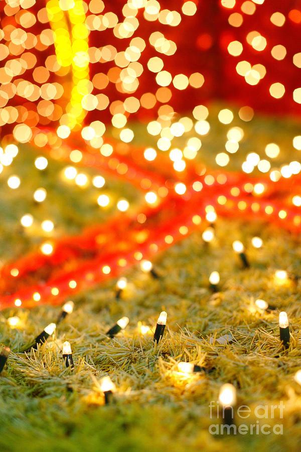 Closeup Photograph - Outdoor Christmas Decorations by Gaspar Avila