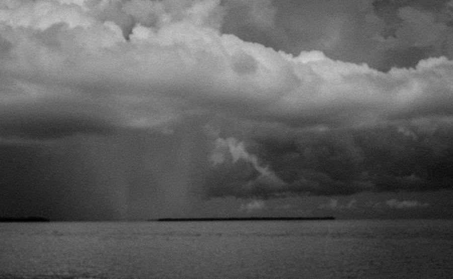 Everglades Photograph - Palm Key by Bob Hartmann