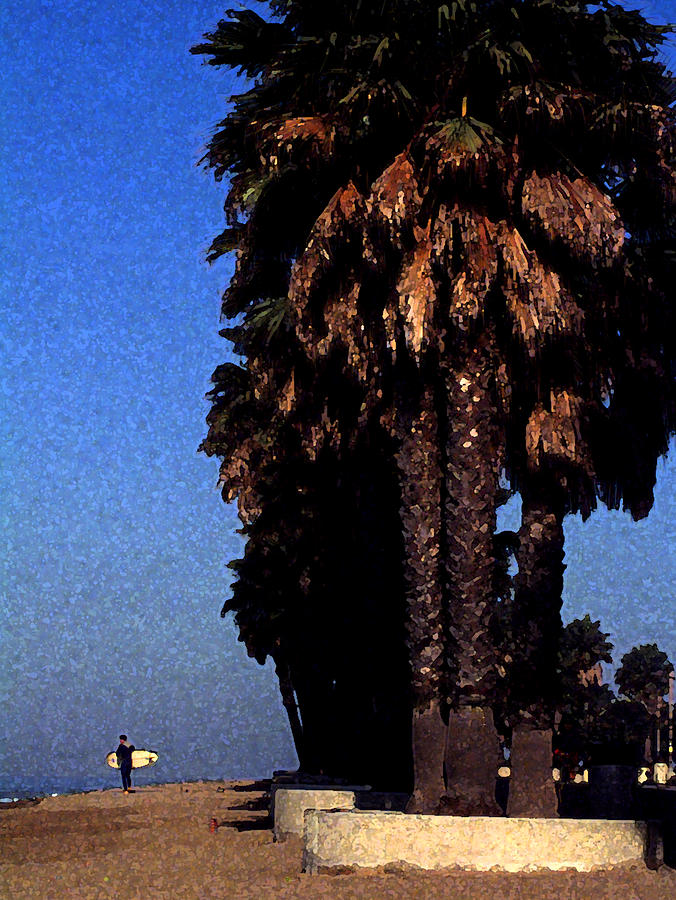 Ventura Photograph - Palm Trees At Surfers Point by Ron Regalado