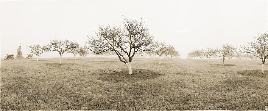 Peach Orchard Photograph - Peach Orchard Gettysburg by Jan W Faul