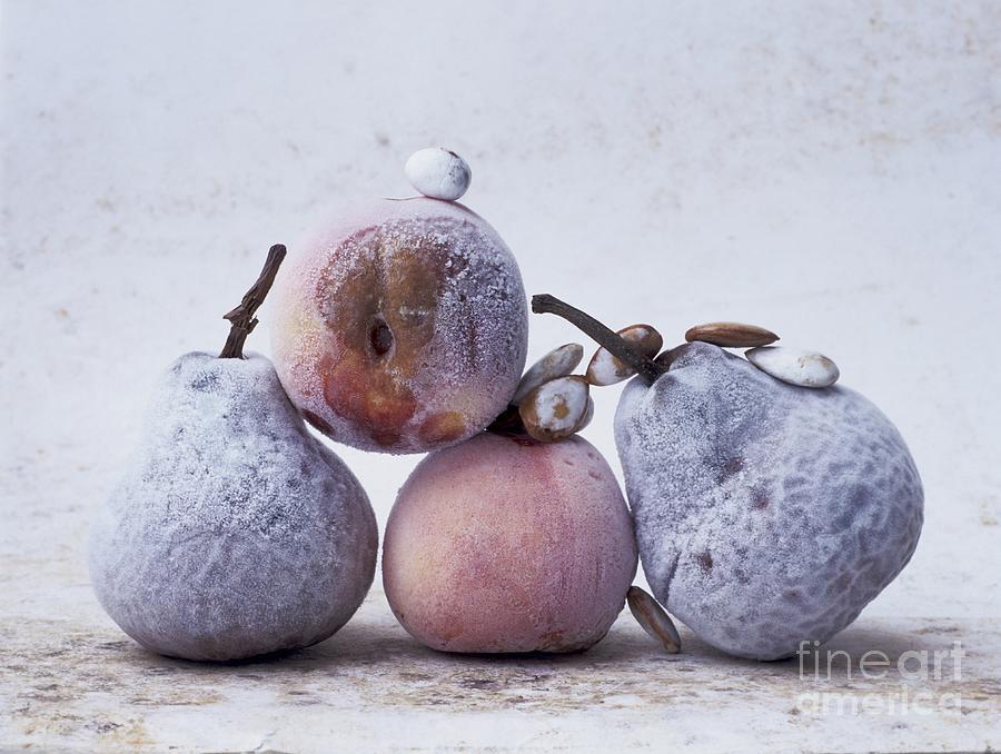 Studio Photograph - Pears And Apples by Bernard Jaubert