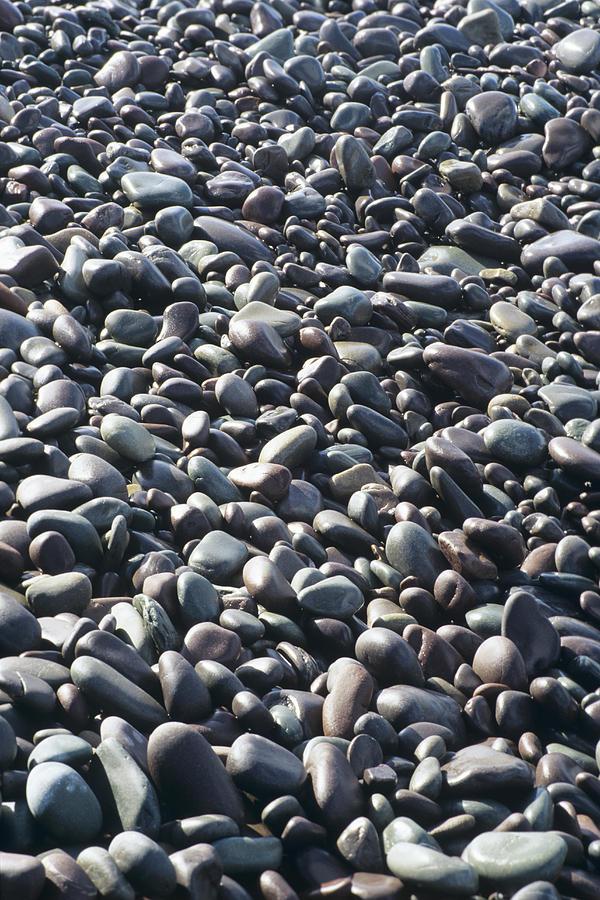 Pebble Photograph - Pebbles On A Beach by David Aubrey