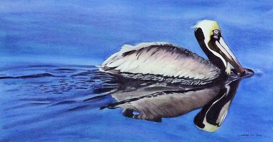 Birds Painting - Pelican Glide by Cory Clifford