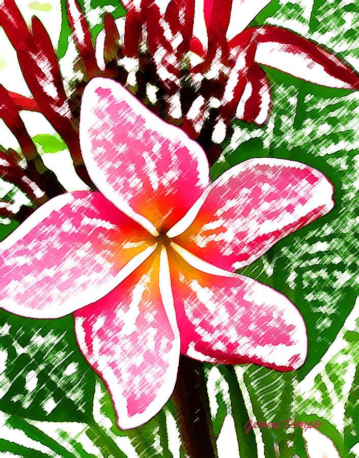 Plumeria Digital Art - Plumeria by James Temple