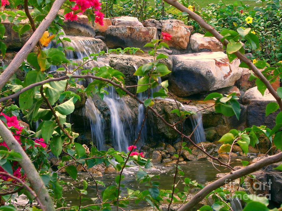 Rocks Photograph - Pretty Garden View by Yali Shi