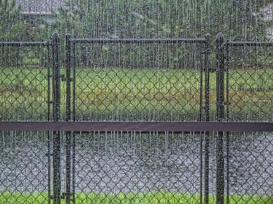 Rain Photograph - Rainy Day by Marilyn Atwell