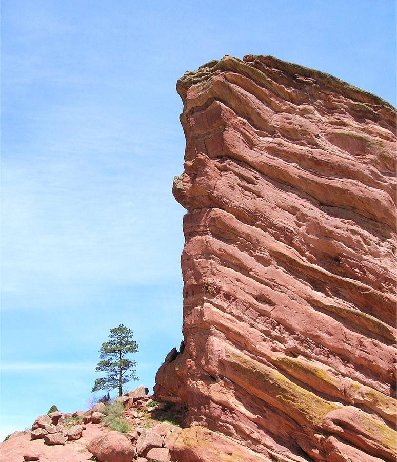 Nature Photography Photograph - Red Rocks by Arlene Carmel