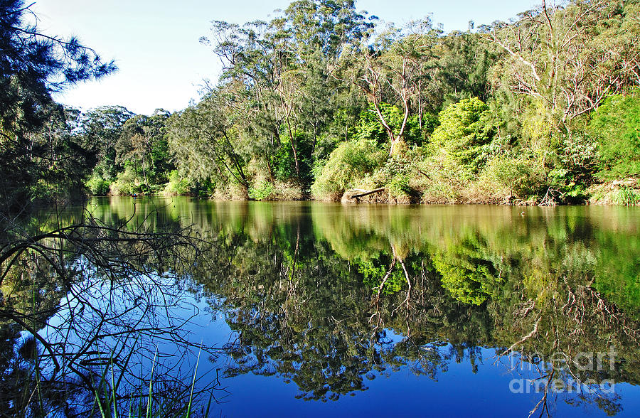 Reflections Photograph - River Reflections by Kaye Menner
