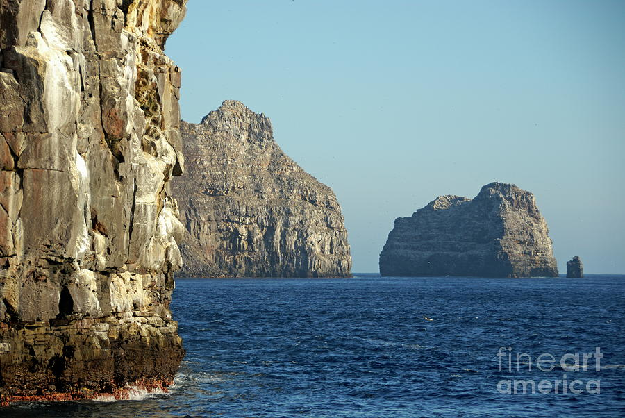 Nature Photograph - Rocky Cliffs Of Wolf Island by Sami Sarkis