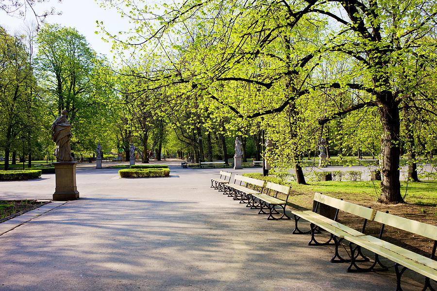 Alley Photograph - Saxon Garden In Warsaw by Artur Bogacki