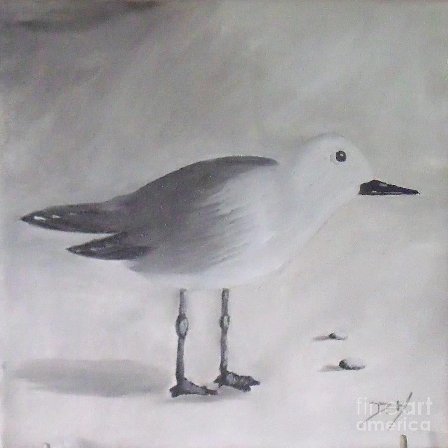 Birds/sea Painting - Seagull by Debra Piro