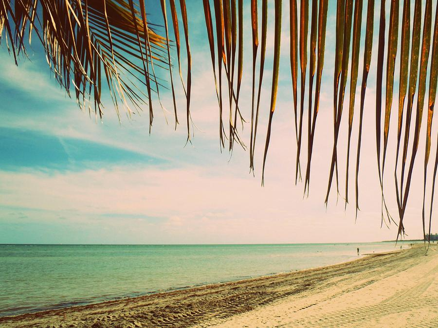 Beach Photograph - Seaside Canopy by JAMART Photography