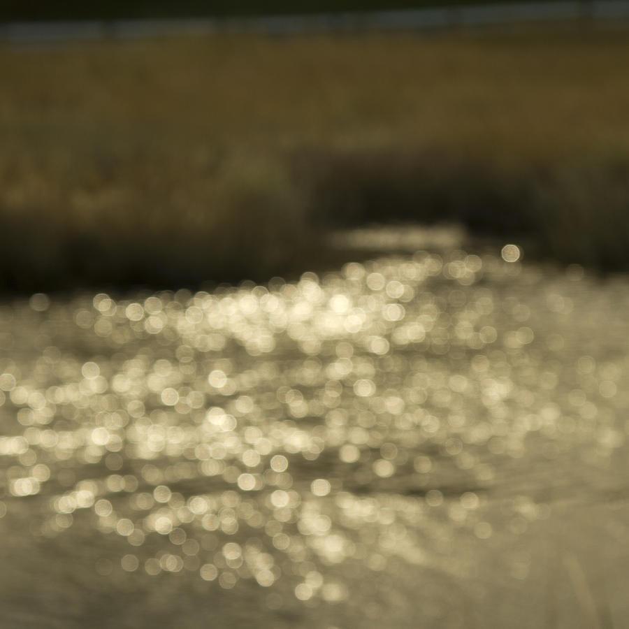 Impressionist Photograph - Seurat Sunshine by Bob Retnauer