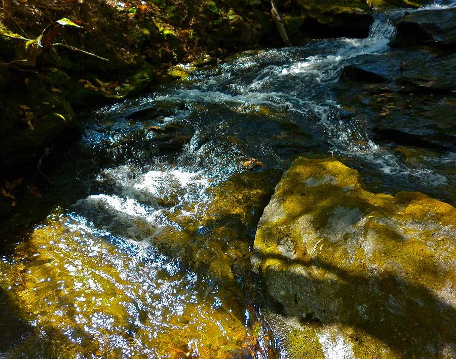 Landscape Photograph - Shadowed Cascade by George Ramos
