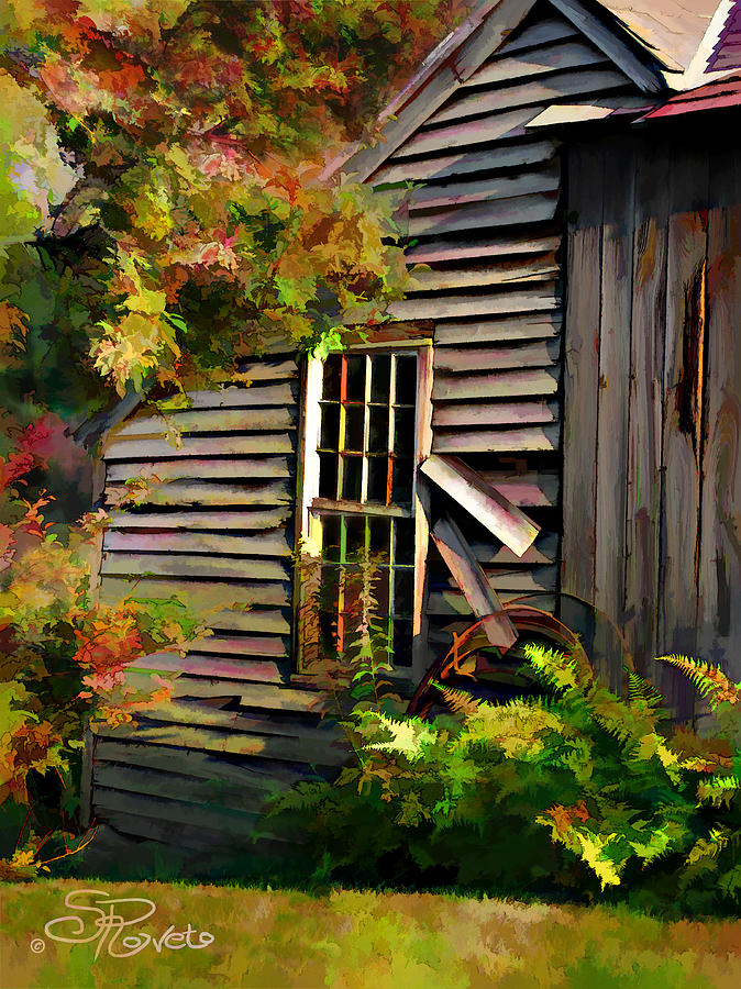 Shed Painting - Shed by Suni Roveto
