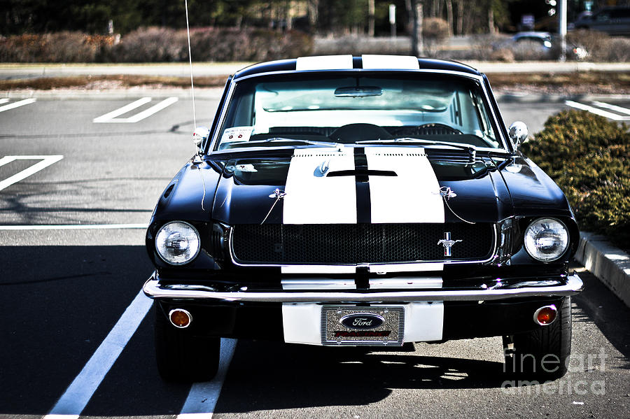 Ford Photograph - Shelby Gt350 by Andrew  Cragin