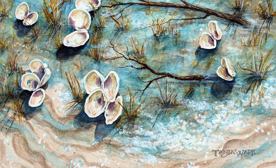 Shells Painting - Shell Shadows by Tanja Ware
