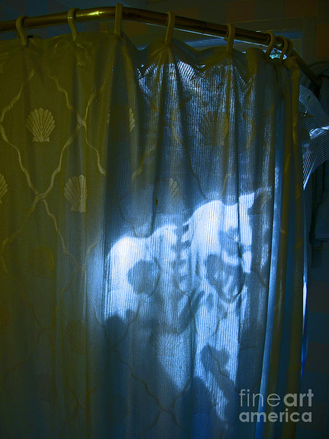 Shower Photograph - Shower Shadows by Beebe  Barksdale-Bruner