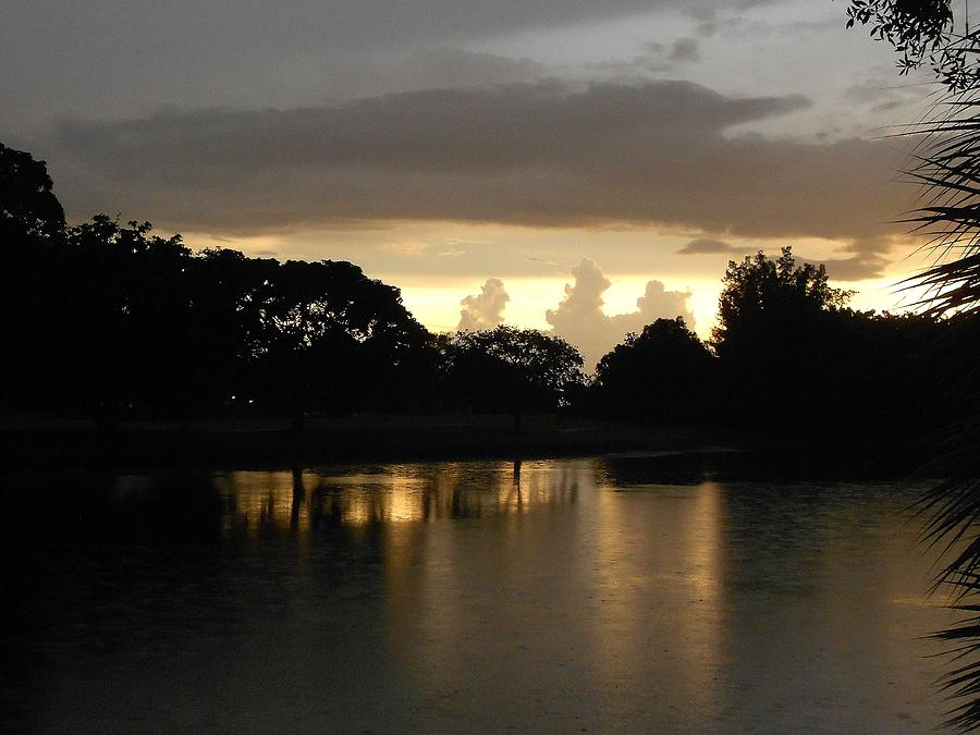 Sunset Photograph - Silent Space by Sheila Silverstein