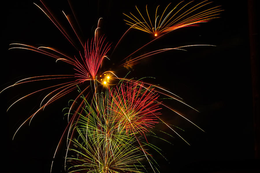 4th Of July Photograph - Sky Flowers by Joshua Dwyer