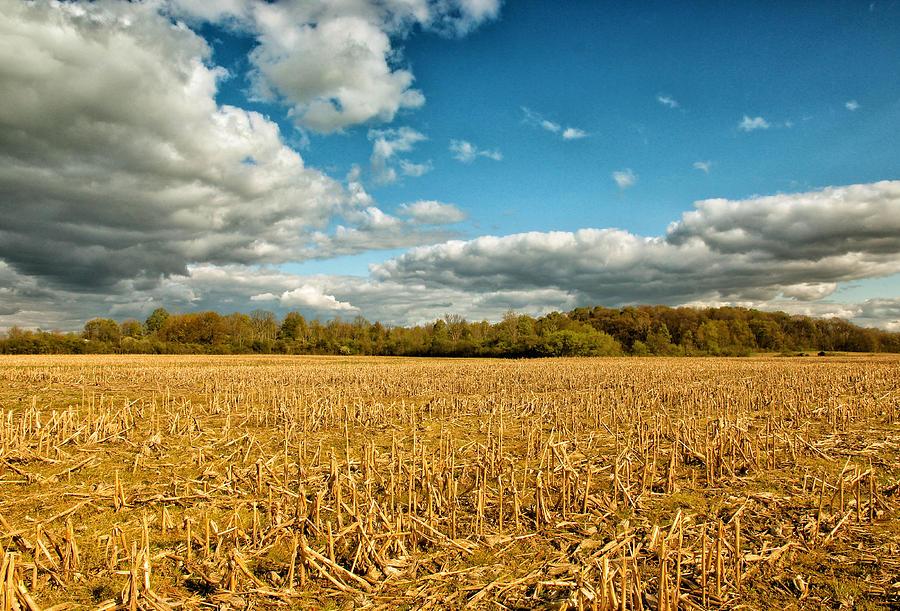 Rural Michigan Photos Photograph - Skyway by Rachel Cohen
