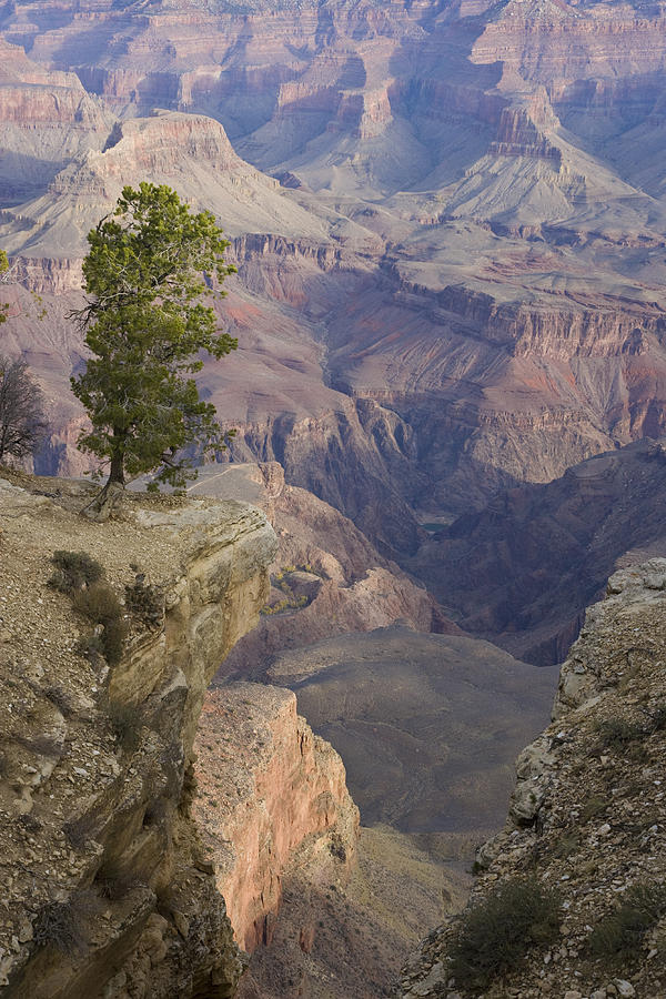 Vertical Photograph - South Rim, Grand Canyon, Arizona, Usa by Peter Adams